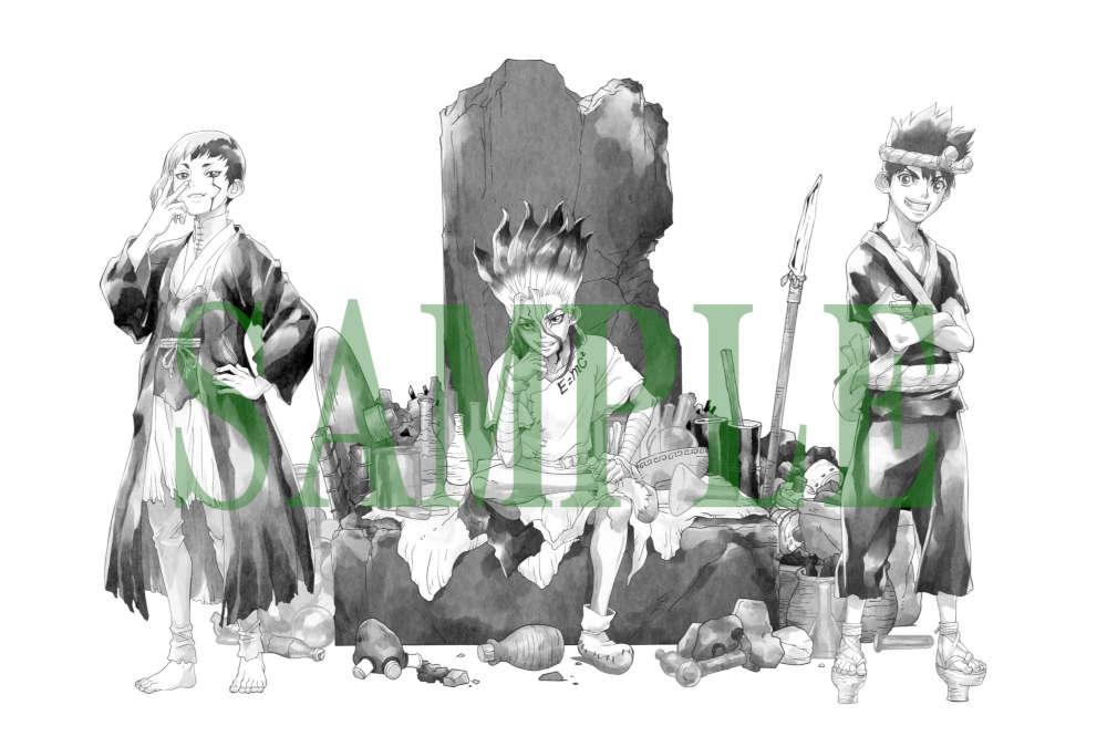 Dr.STONE ドクターストーン Vol.1 DVD【初回生産限定版】