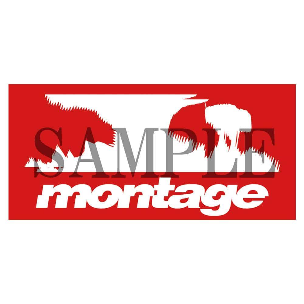 Fairy gone × montage noize logo tee color BLACK(XLサイズ)