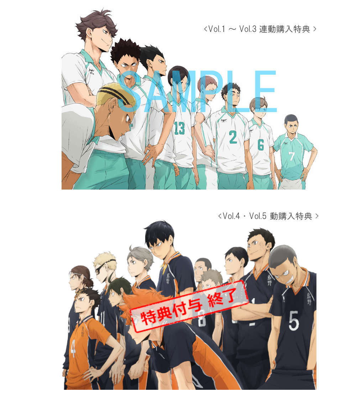 ハイキュー!! 烏野高校 VS 白鳥沢学園高校 Vol.5 Blu-ray 初回限定版